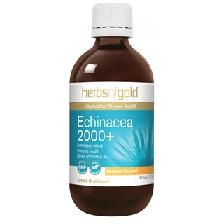 Echinacea 2000+ by Herbs of Gold